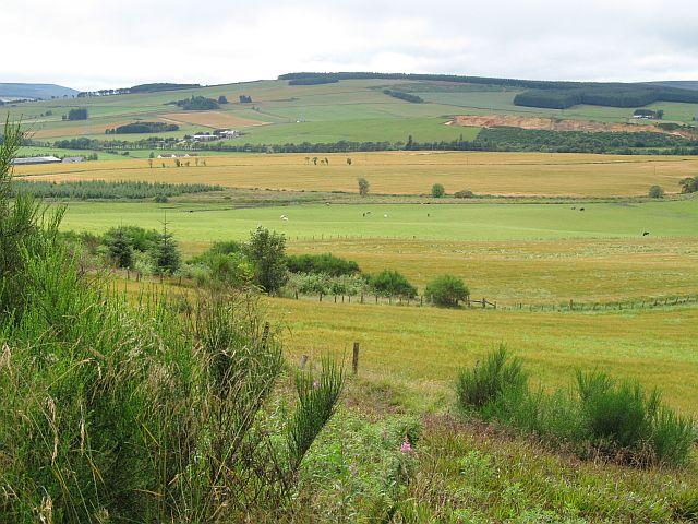 View towards Mains of Birkenburn