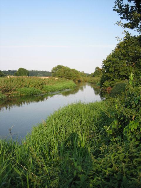 River beside Swanton Morley road, near Worthing, Norfolk