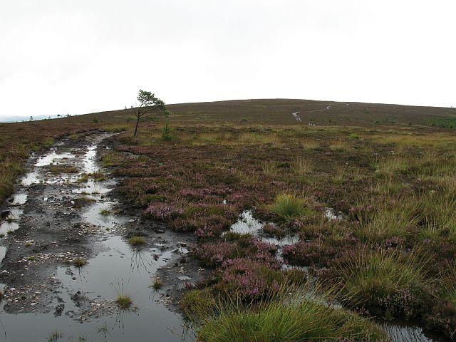 Balloch Hill