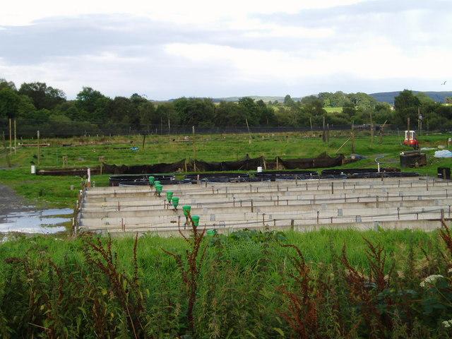 Fish Farm, Burnfoot, New Galloway.