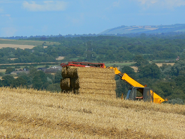 Harvesting operations near Stert