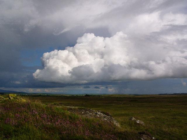Looking east over Craigdow Moor