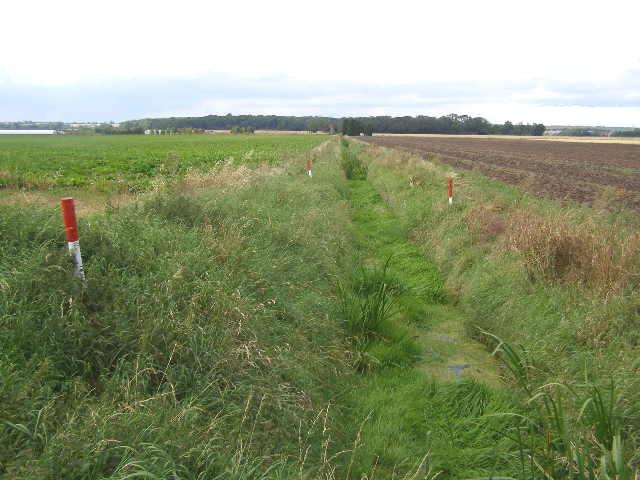 Pasture Drain, Northorpe Fen