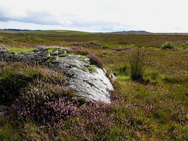 Craigdow Moor