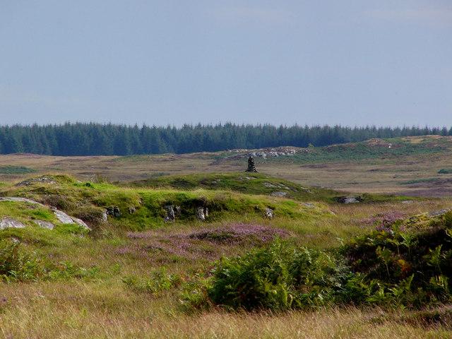 Shepherds cairn on Craigdow Moor