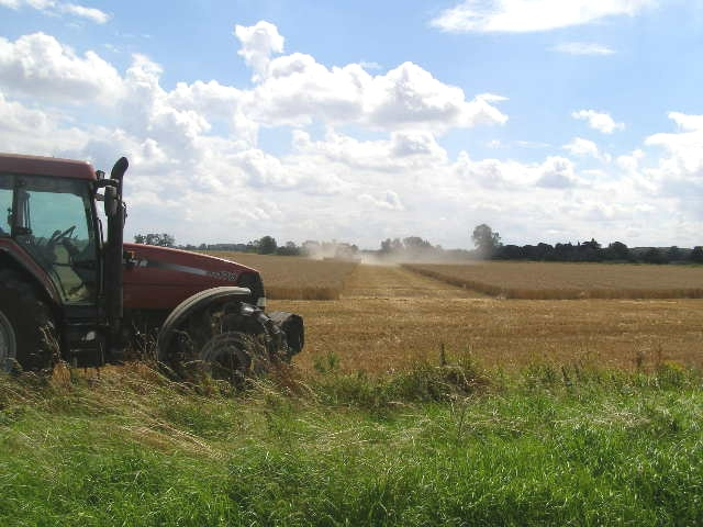 Combine working a field of wheat, Northorpe Fen