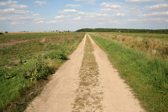 Water Rail Way