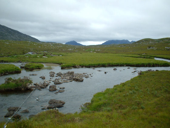 Little Gruinard, Eilean dubh