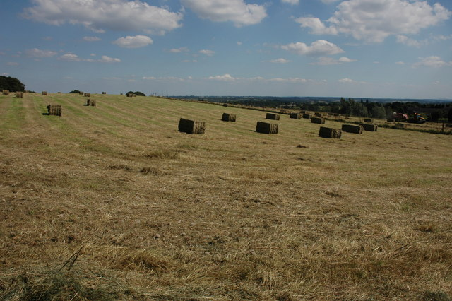 Hay bales near Mockley Wood