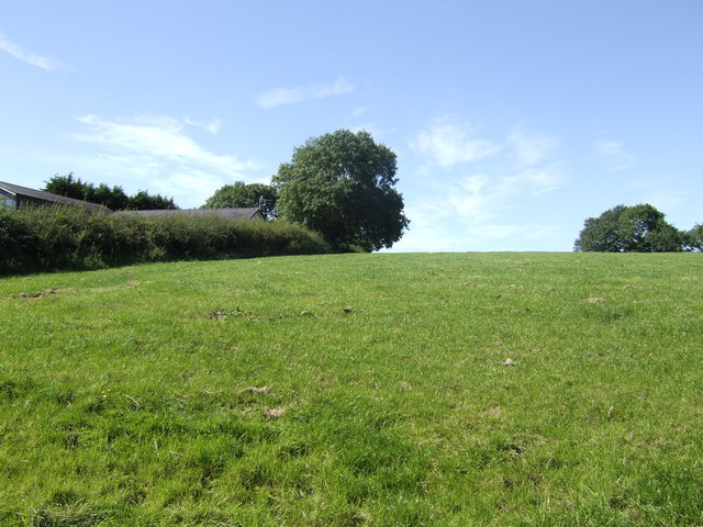 Pasture land near Beaconing