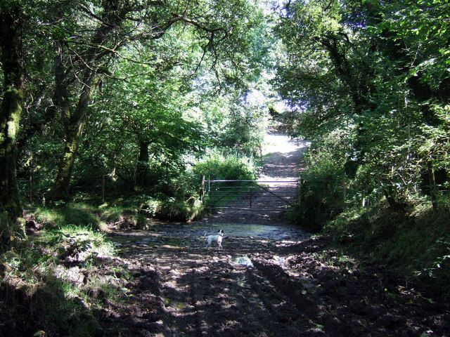 Footpath towards Glogue