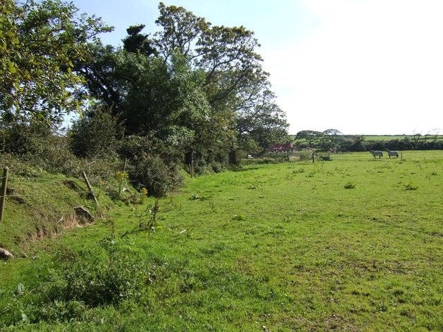 Pasture land near West Jordanston