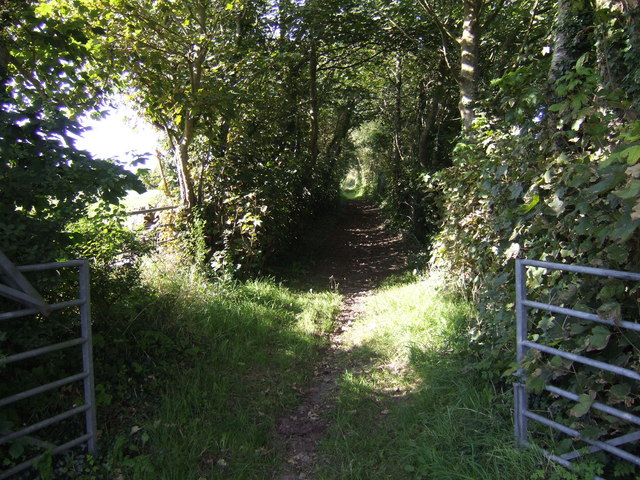 Bridleway north from Orielton