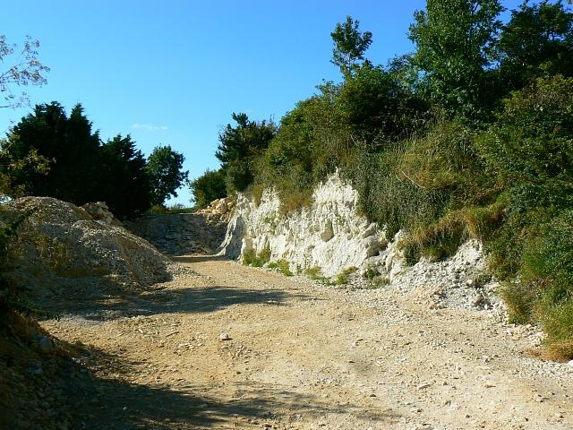Miniature chalk quarry, Wessex Ridgeway, near Stert