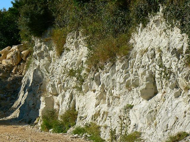 Miniature chalk quarry (a closer look), Wessex Ridgeway, near Stert