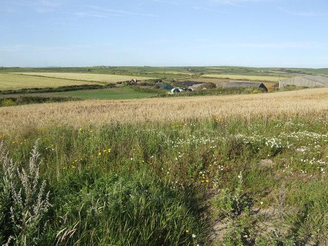 Gupton Farm
