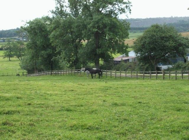 Auchenbowie Mains Farm