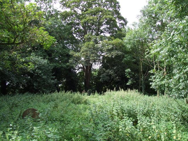 All Saints churchyard, Moorby