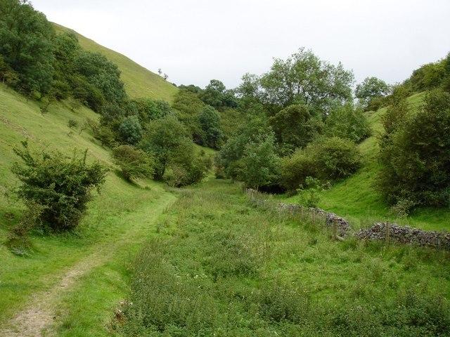 Wetton, valley SE of Wetton Mill
