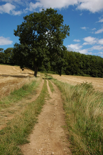 Bridleway on Bredon Hill