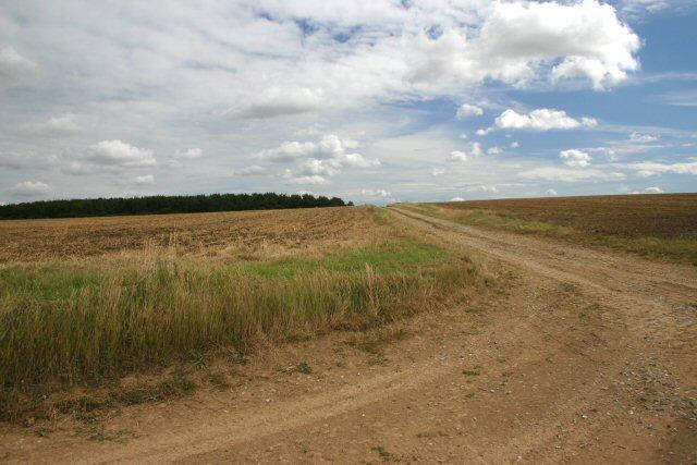Track to Wadlow Farm