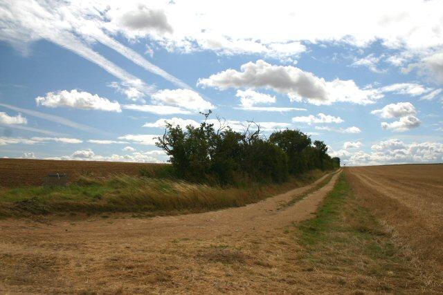Track near Wadlow Farm