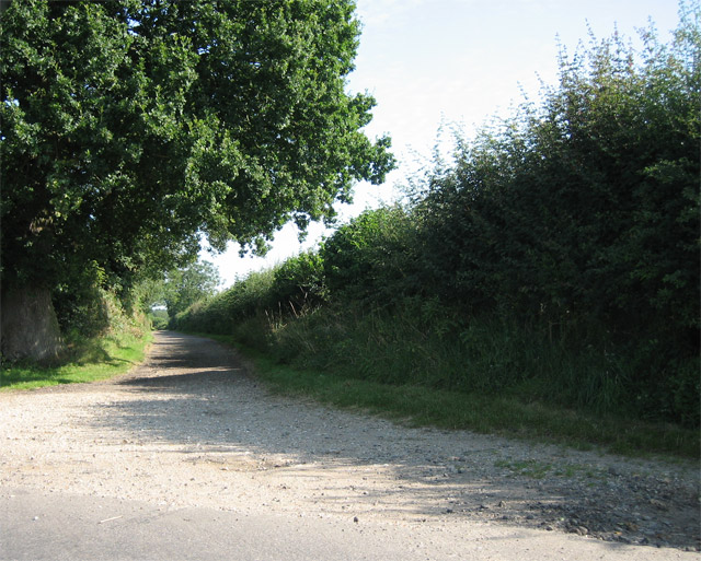The track to Dillington Carr