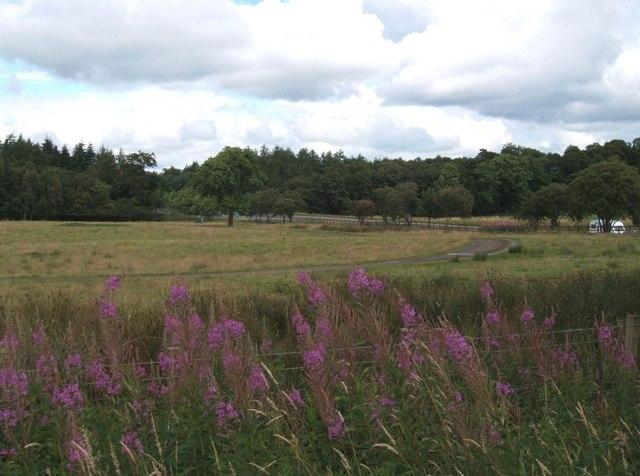 East of Auchenbowie Home Farm