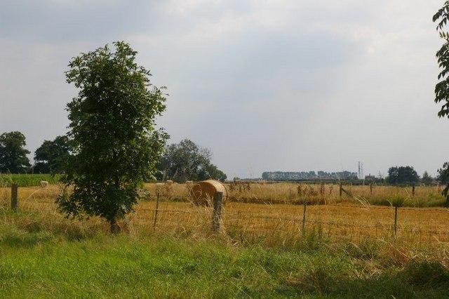Arable field