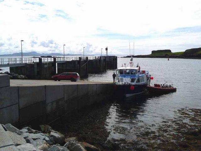 Shearwater at Port Mor