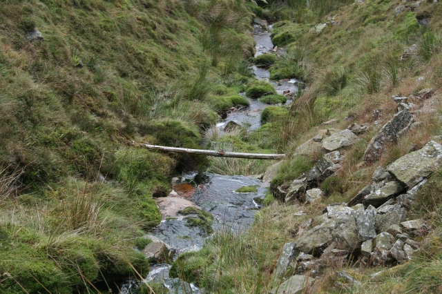 Stoat Trap across Fossdale Gill.