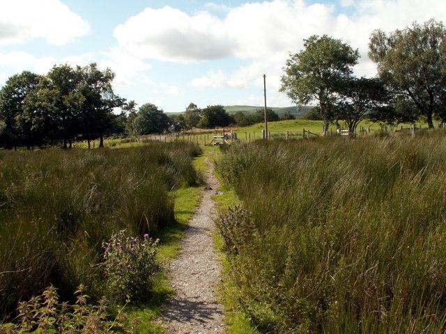 The Footpath to Pontrhydfendigaid