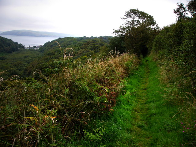 Footpath south of Pwllgwaelod, looking east