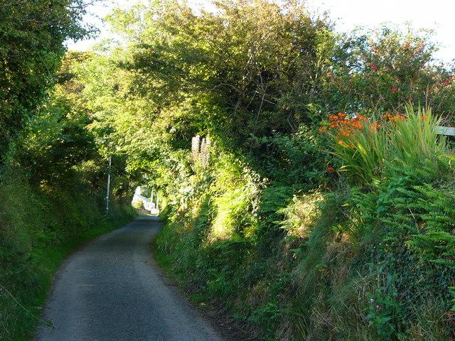 Lane from Bryn-henllan to Cwm-yr-Eglwys, looking south