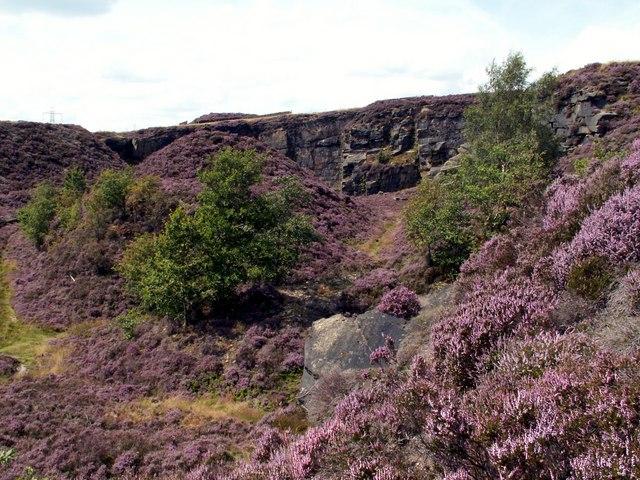 Holybank Quarry Tintwistle