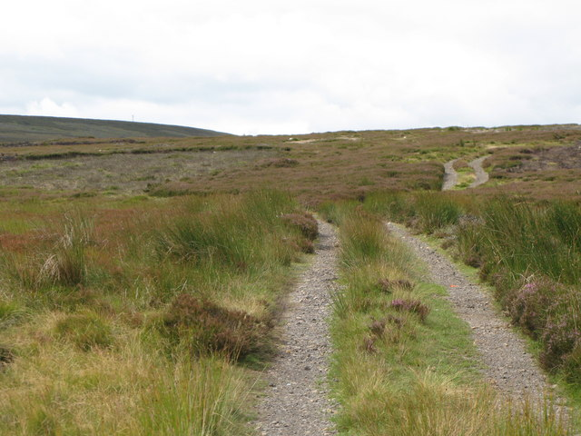 Track towards Black Hill
