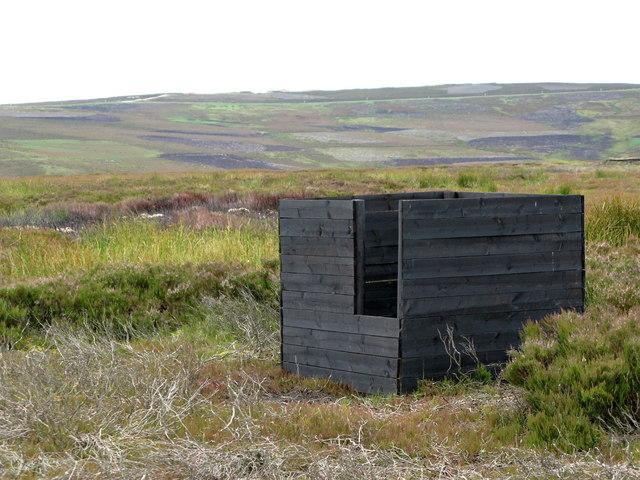 Black grouse butt on Feldon Plain