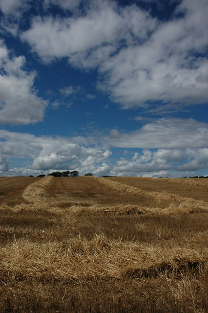 Harvested wheatfield, Bredon Hill