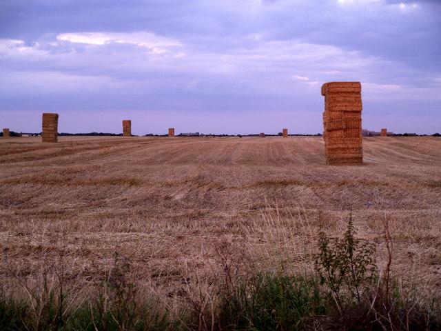 Harvested Field near Skeffling