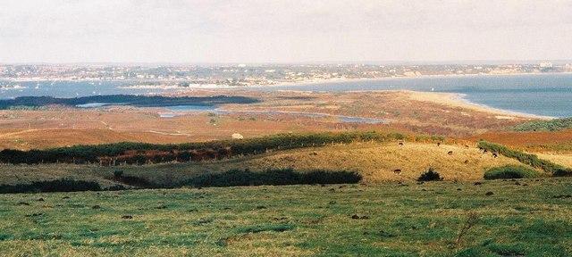 Studland Heath: a clear view