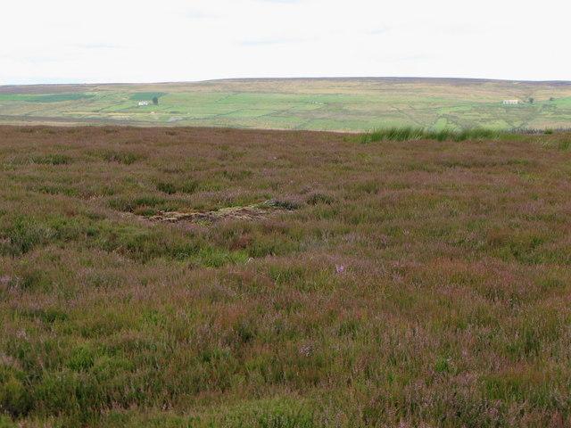 Moorland northwest of Black Hill