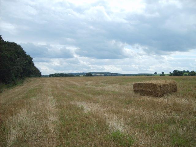 Greensforge Path
