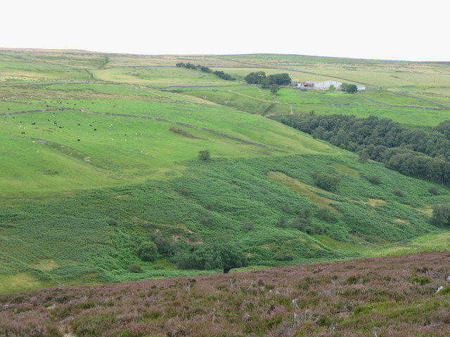 The valley of Burnhope Burn (2)