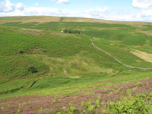 The valley of Eudon Burn (2)