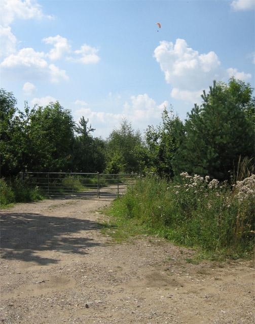 Woodland with paraglider near Herne Hill Farm