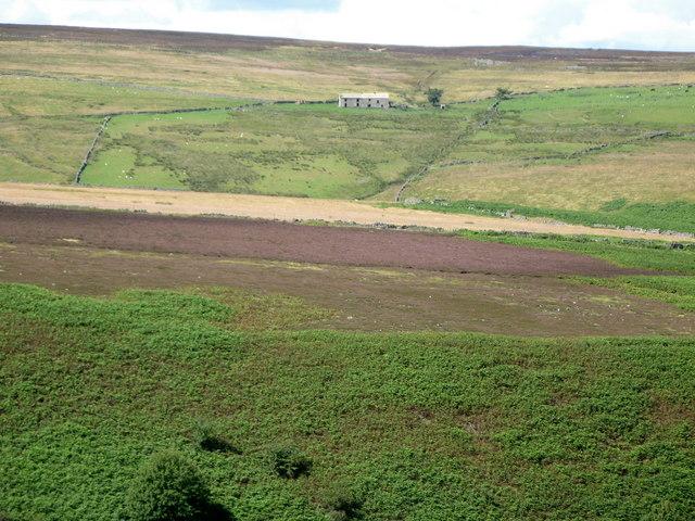 Haygarth's Flat