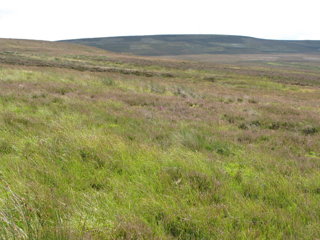 Moorland above the Eudon Burn