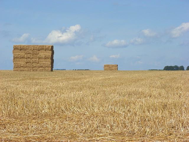 Farmland and bales, Shrewton