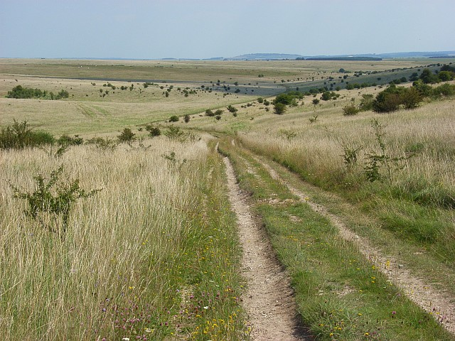 Byway descending to Honeydown Bottom