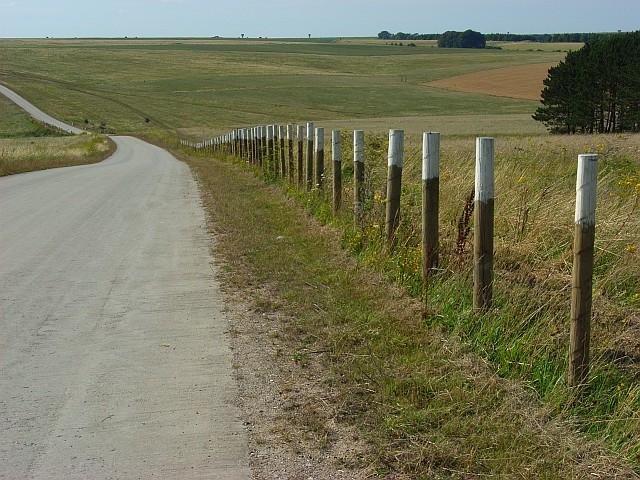 Military road, Tilshead